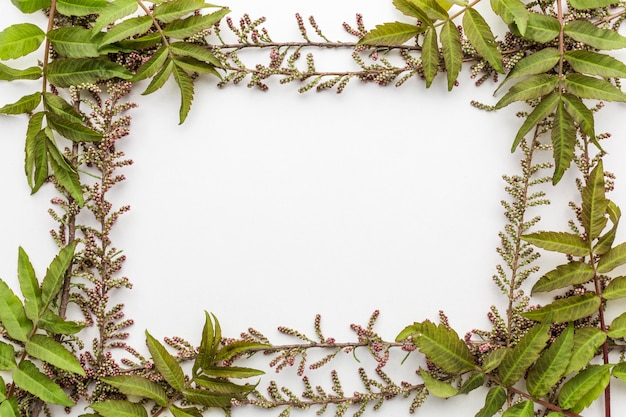 Flat lay of leaves frame with copy space