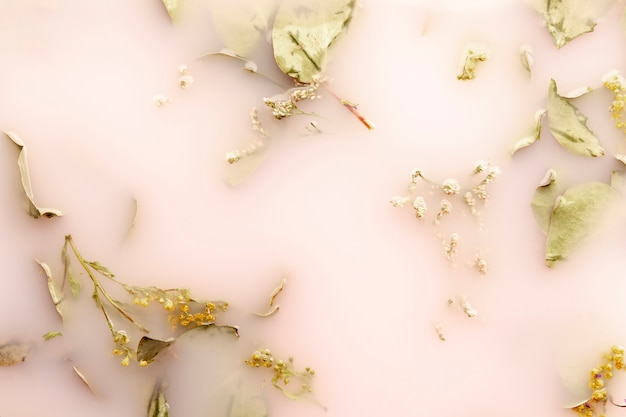 Flat lay leaves in pink colored water