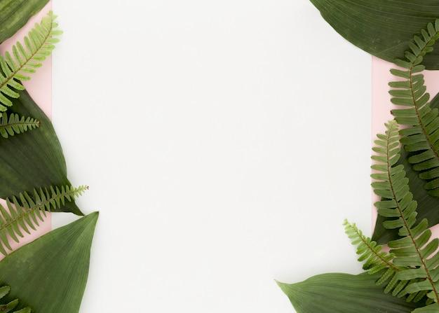 Lay piatto di foglie con copia spazio