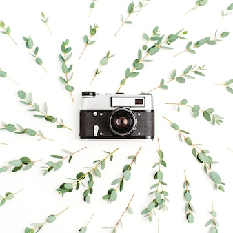 Flat lay of minimal composition with retro photo camera in frame of eucalyptus branch