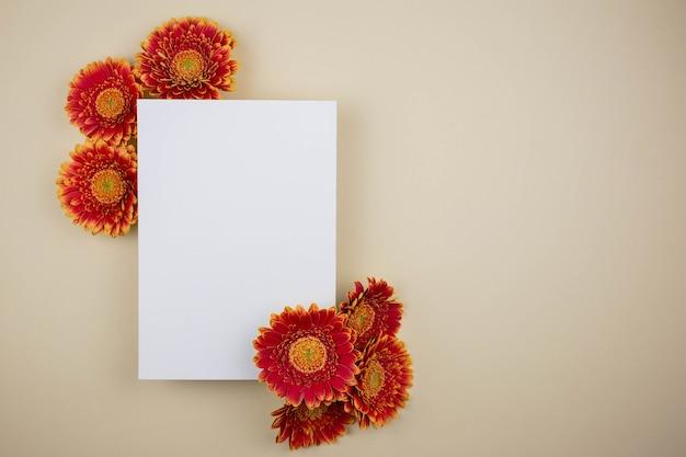 美しいガーベラの花とライトベージュのブランクカードを備えたフラットレイモックアップ構成。