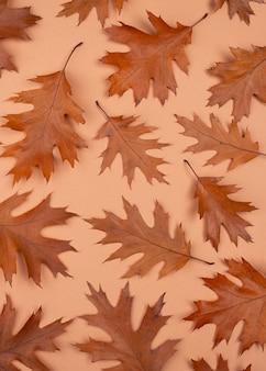 Lay piatto di foglie monocromatiche con copia spazio