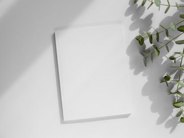 フラットレイ自然の葉と白い雑誌の品揃え