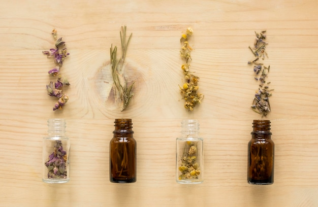 Lay piatto di erbe medicinali naturali in bottiglie