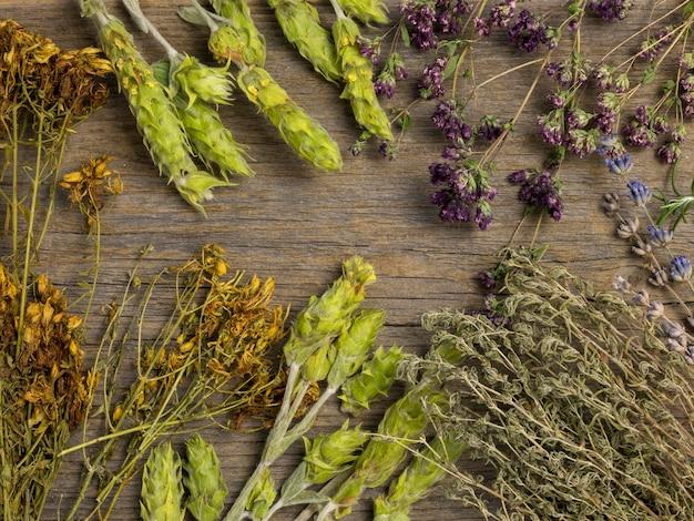 Flat lay of natural medicinal spices and herbs