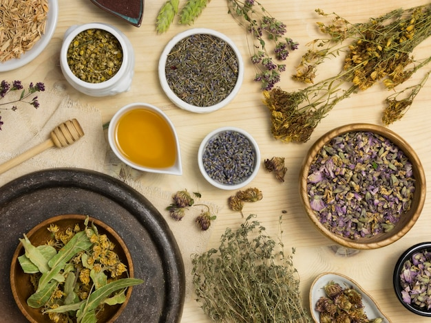 Flat lay of natural medicinal spices and herbs