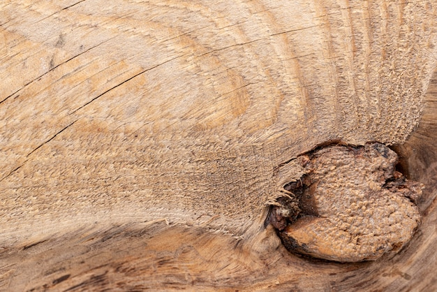 평면 누워 천연 나무 질감