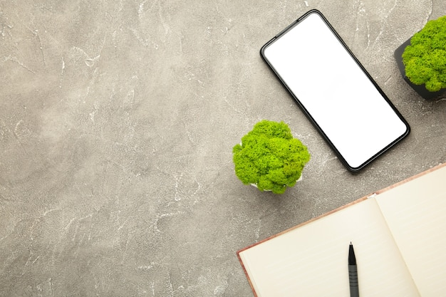 Flat lay on notebook with smartphone and plant