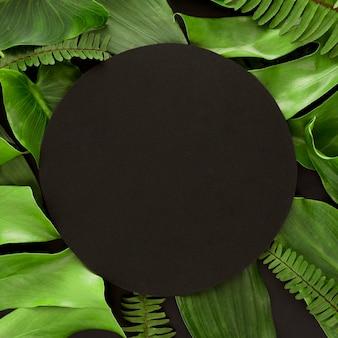 복사 공간 잎의 구색의 플랫 누워