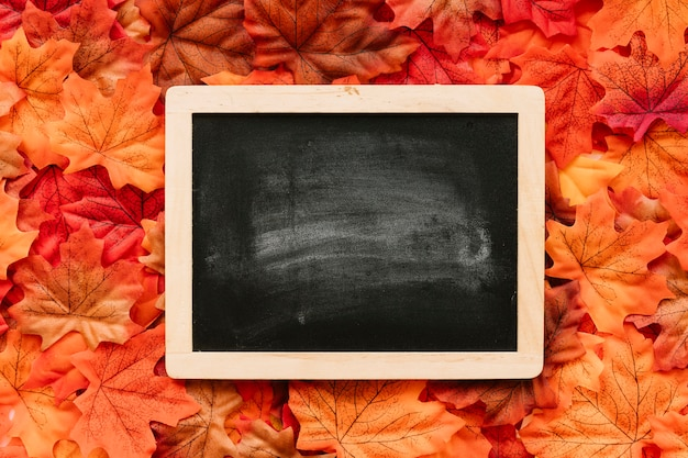 Плоский лепесток осенних листьев с школьной доской