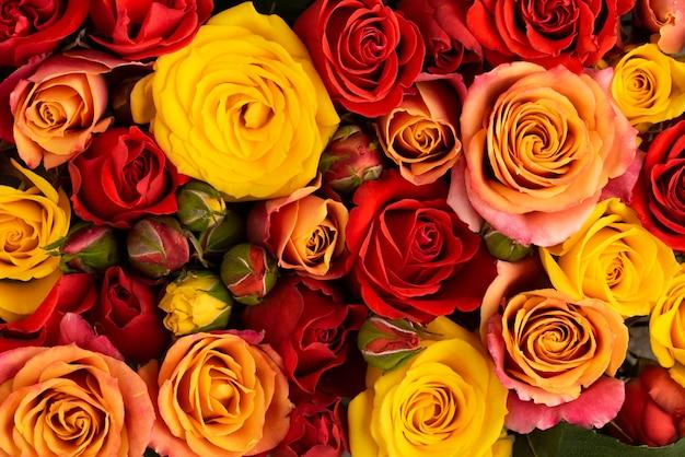 美しく咲いた色とりどりの花のフラットレイ