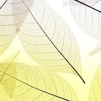 컬러 반투명 잎의 평평한 누워