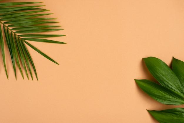 Плоская планировка листьев различных растений с копией пространства