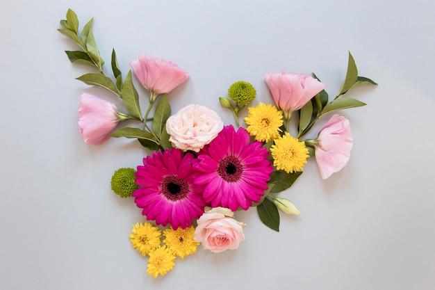 Плоская планировка великолепного ассортимента цветов