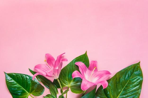 ピンクの背景にユリの花と緑の葉のフラットレイアウト。スペースをコピーします。