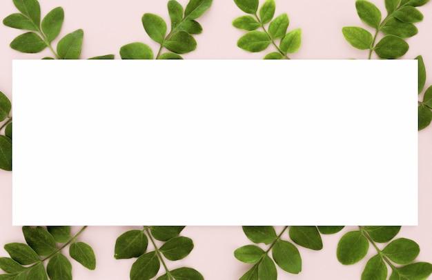 Плоская планировка из многих листьев с копией пространства