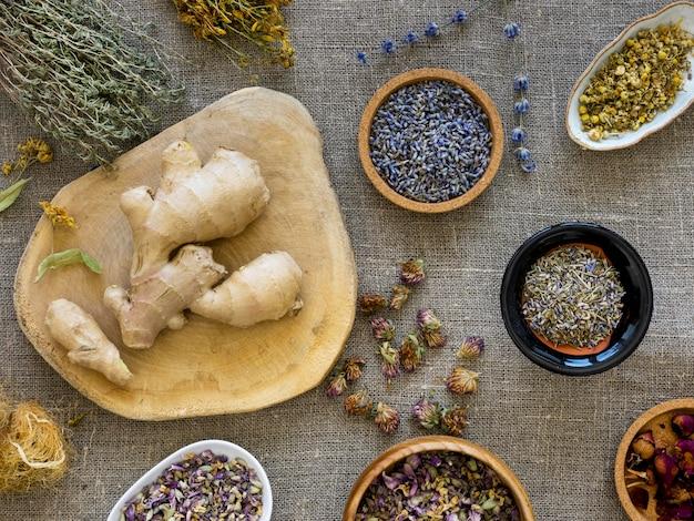 Плоская планировка лекарственных трав и специй