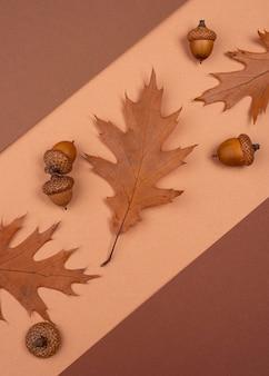 단색 잎과 도토리의 평평한 누워