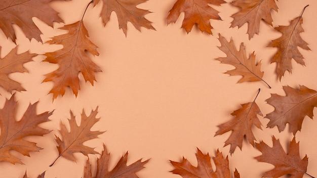 コピースペースのある単色の葉のフラットレイ