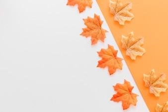 Flat lay of orange maple leaves on paper