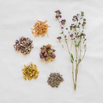 Плоская планировка органических лекарств
