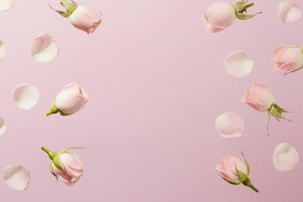 コピースペースのあるピンクの春のバラのフラットレイ