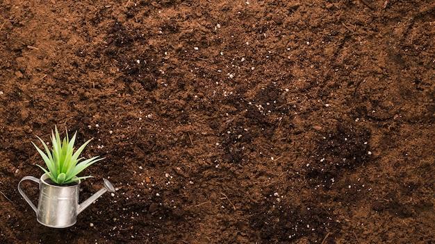 Плоская планировка растений и copyspace