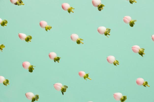 봄 꽃 봉오리의 평평한 누워