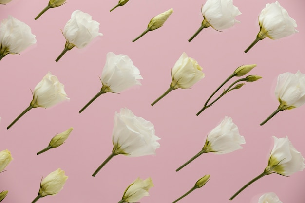 春のバラのフラットレイ