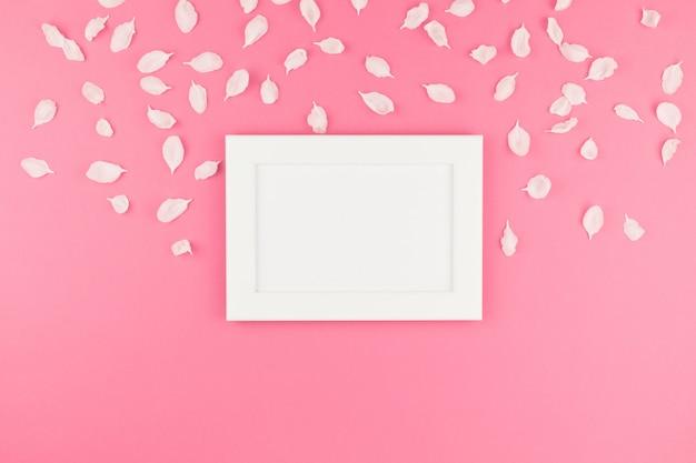 꽃잎 배경으로 흰색 프레임의 평평하다