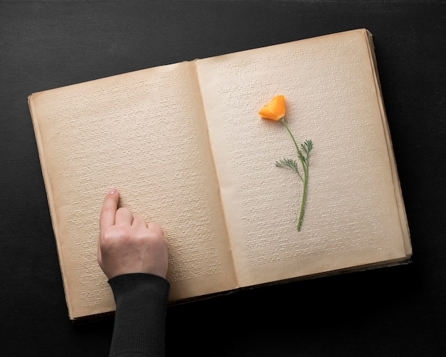 Flat lay old braille book with flower