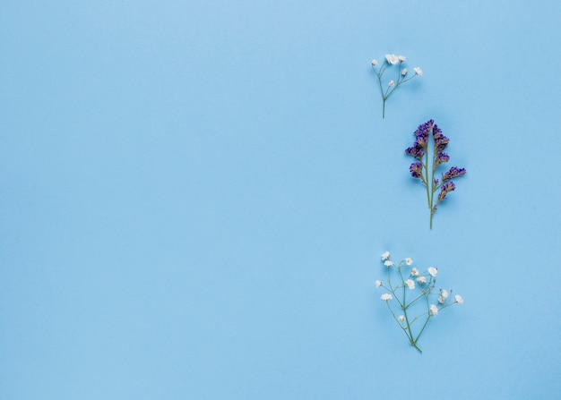 コピースペースを持つ平らなレイアウトの装飾用の花