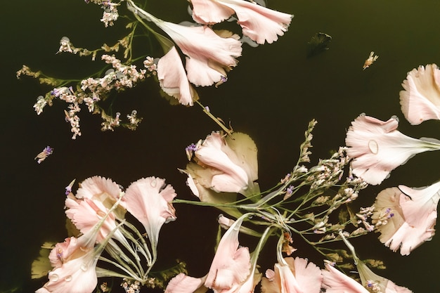 Flat lay pale pink flowers in black water