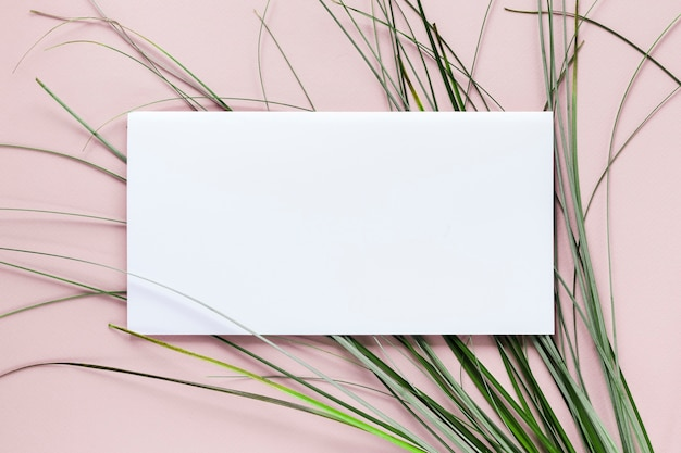 Flat lay of paper card template with herbs