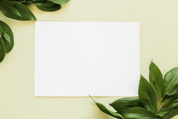 Flat lay of paper card template with leaves