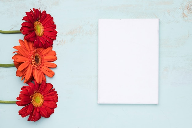 Flat lay of paper template with nature concept