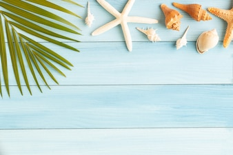 Flat lay photo coconut leaf and seashell on wood background