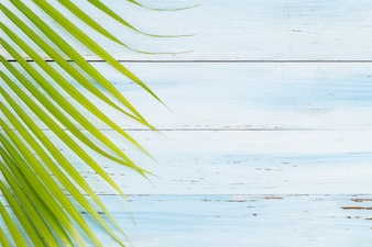 Flat lay photo coconut leaf on blue wood background