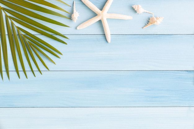 Flat lay photo coconut leaf and seashell on blue wood background