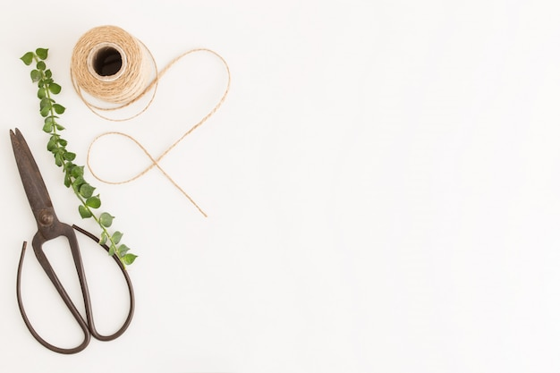 Flat lay photo rustic scissors and branches and sack rope on white background
