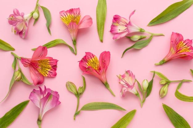 Flat lay pink alstroemeria arrangement