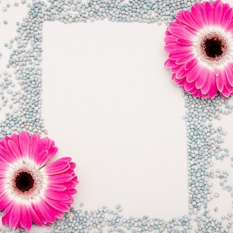 ピンクのヒナギクと小石の平敷き