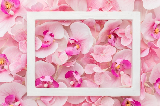 Flat lay pink orchids and hydrangea with frame