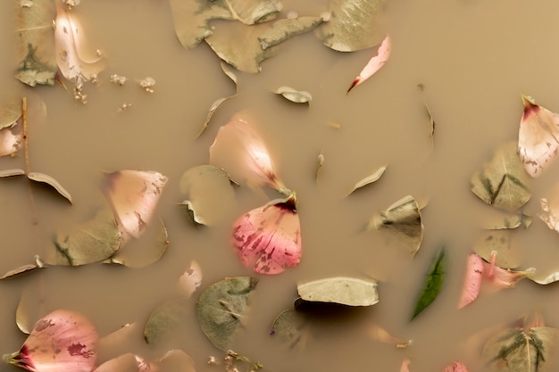 Flat lay pink petals and leaves in brown water
