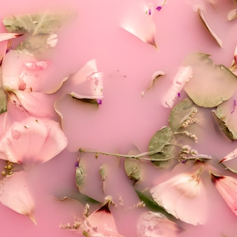 Flat lay pink petals in pink colored water