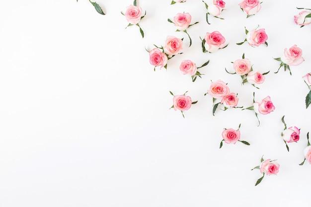 Плоские лежат розовые бутоны и листья розового рисунка на белой поверхности
