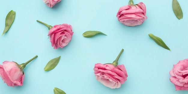 Flat lay pink roses