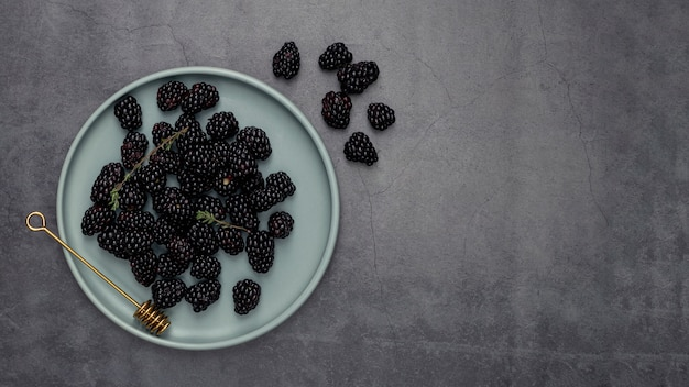 Flat lay of plate with blackberries and copy space