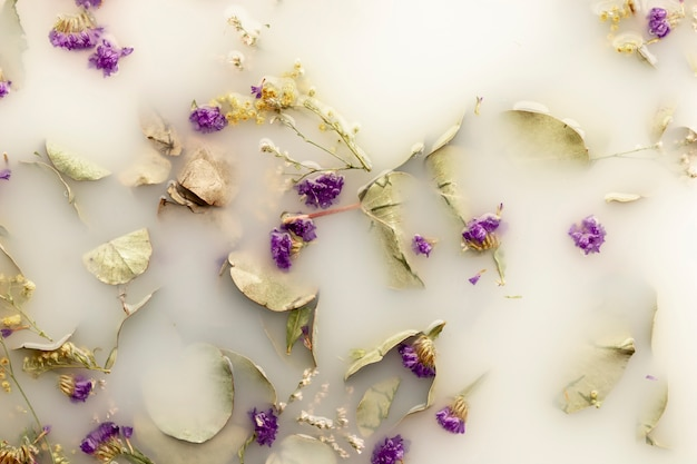 Flat lay purple flowers in white colored water