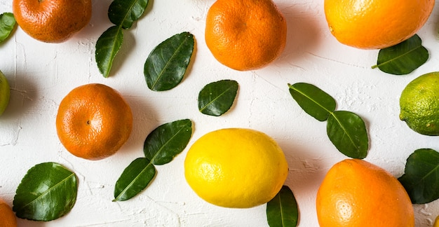 Flat lay the raw fresh citrus fruit - orange, lemon, lime and tangerine with lime leaves.